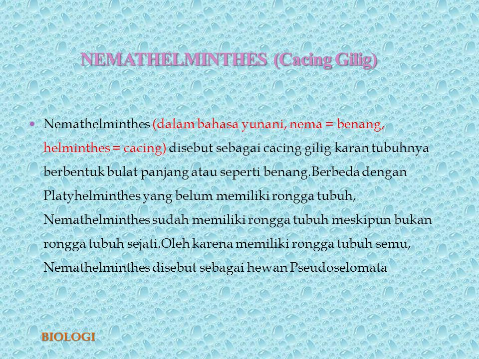 sub kelas nemathelminthes