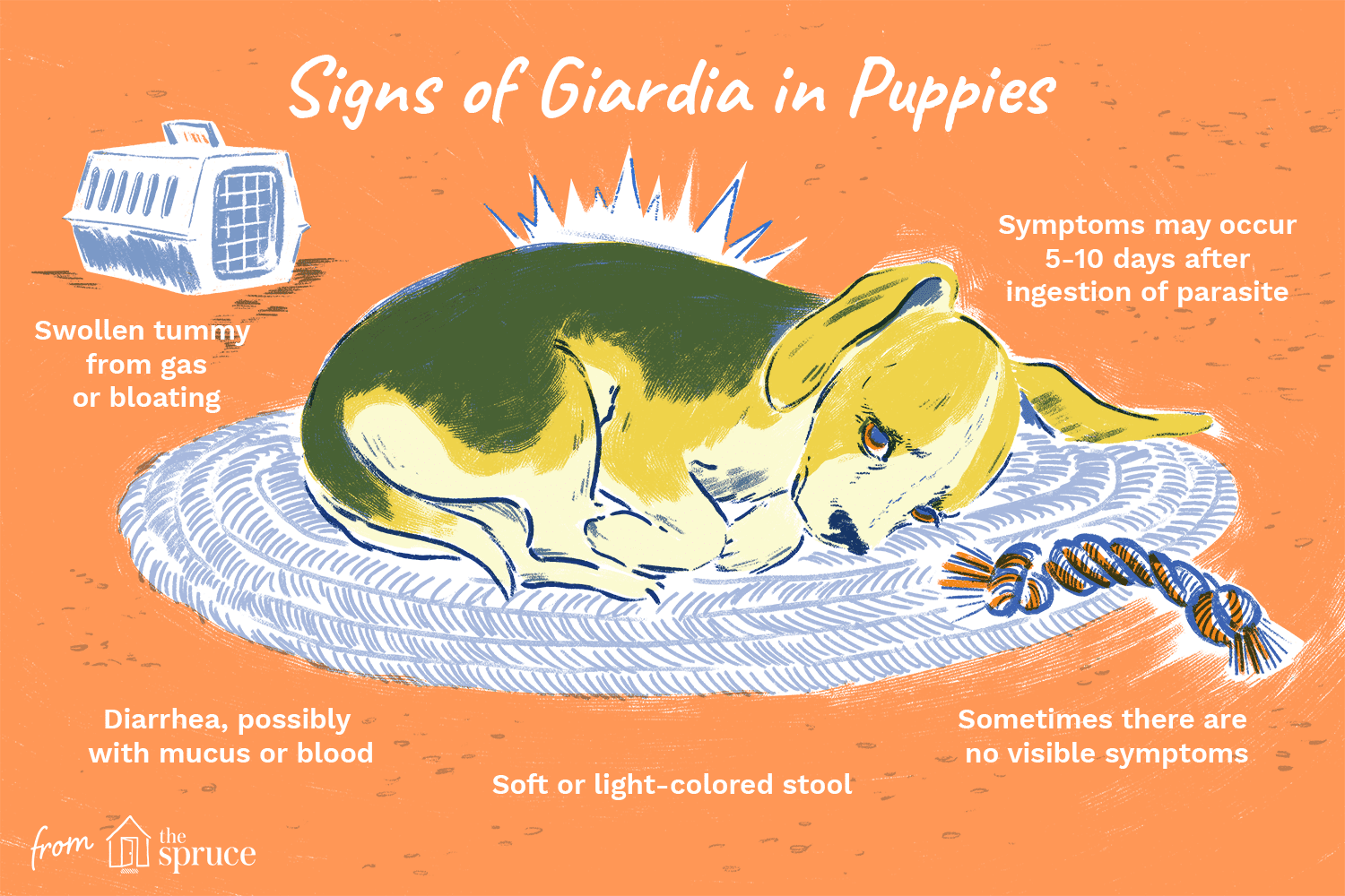 can giardia cause blood in stool