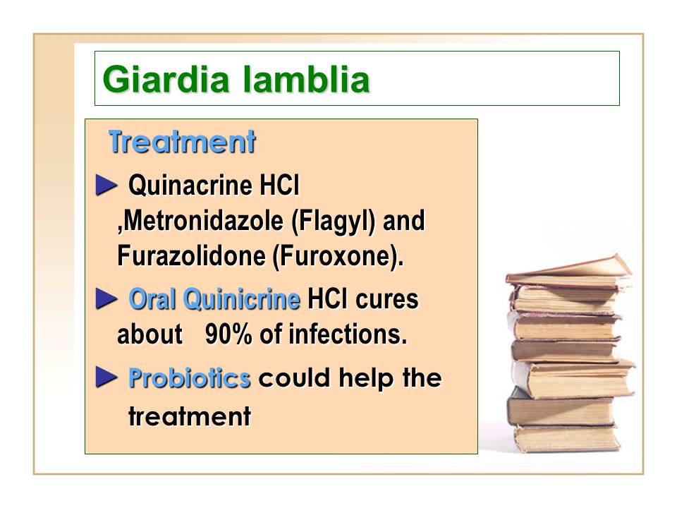 Four fact sheets now available in Hungarian - Giardia worm treatment